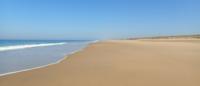 «Les plages vont-elles vraiment disparaître …?»