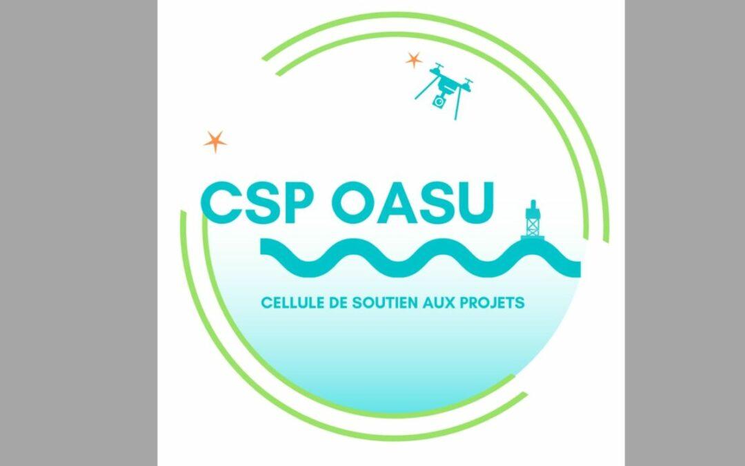 Cellule de soutien aux projets OASU : Qu'est-ce que c'est ?
