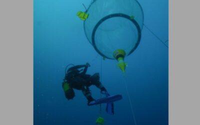 L'océan au cœur des recherches de l'INSU